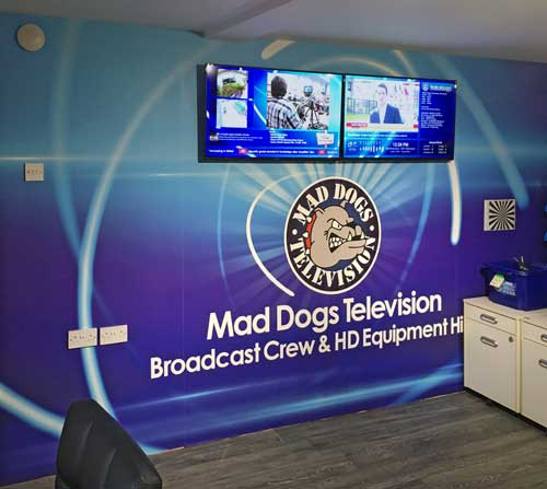 wallpaper installation Mad Dogs TV