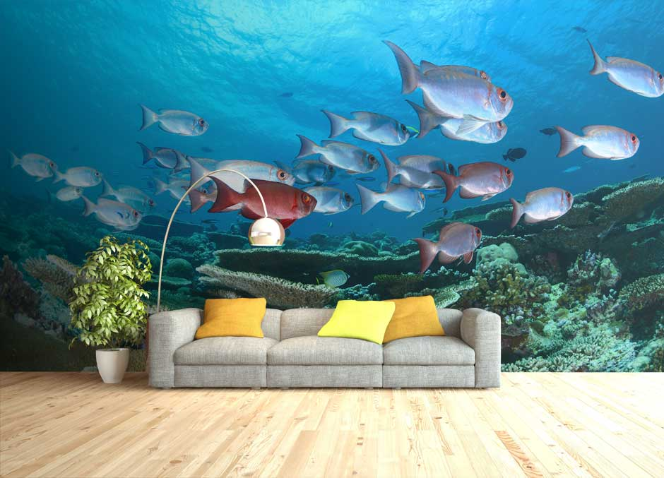 Custom Wall Murals & Photo Wallpaper